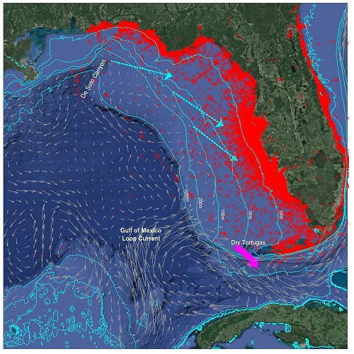 Current Map Of Florida.Seasonal Prediction Of Major Red Tide Events